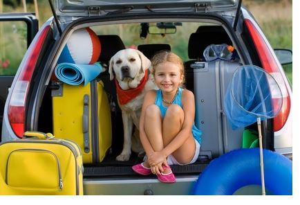 vacaciones viajar con vuestra mascota veterinario hospitalet